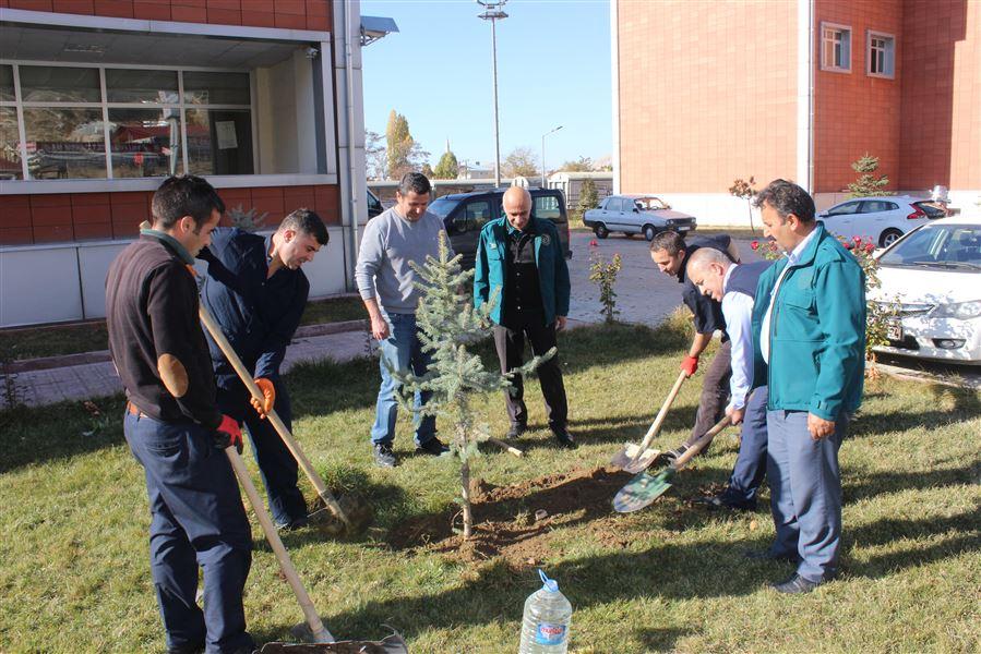 Bölge Müdürlüğü personelimiz fidanları toprakla buluşturdu